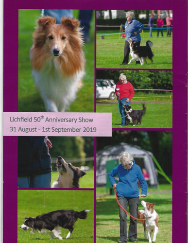 Clipping from DogSportsUK, issue 10/2019