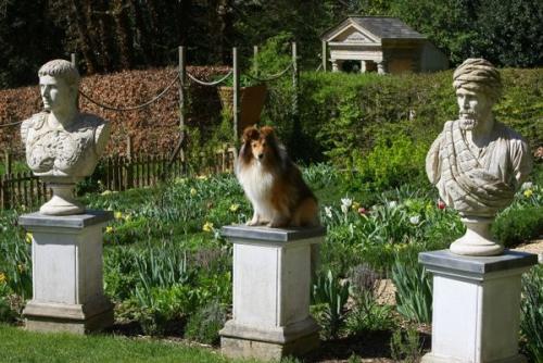 Painswick Rococo Garden, April 2015