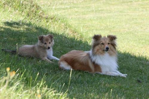 July 2013: Tamina and Fiamma